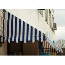 Маркіза біло - синя
