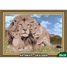 VKA3009 Родина