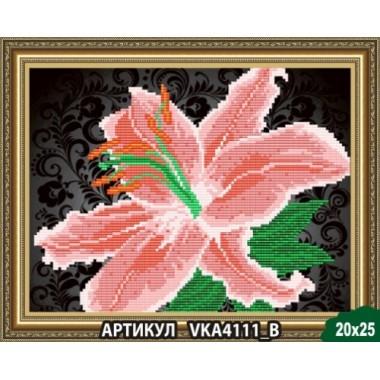 VKA4111B Лілії