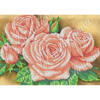 W-384 Захоплюючі троянди