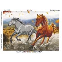 В-209 Біжать коні