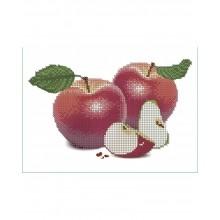Набір для вишивки бісером А5-Д-068 Яблука